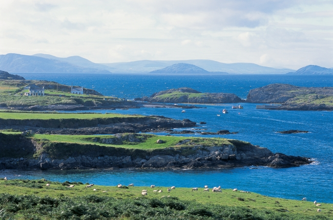 Bed And Breakfast On The Ring Of Kerry