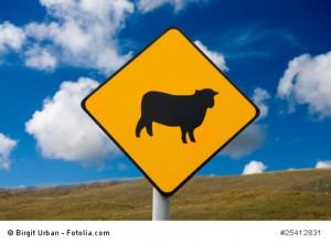 Vorsicht Schafe, Verkehrsschild