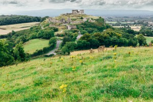 Rock_Of_Dunamase_Landscape